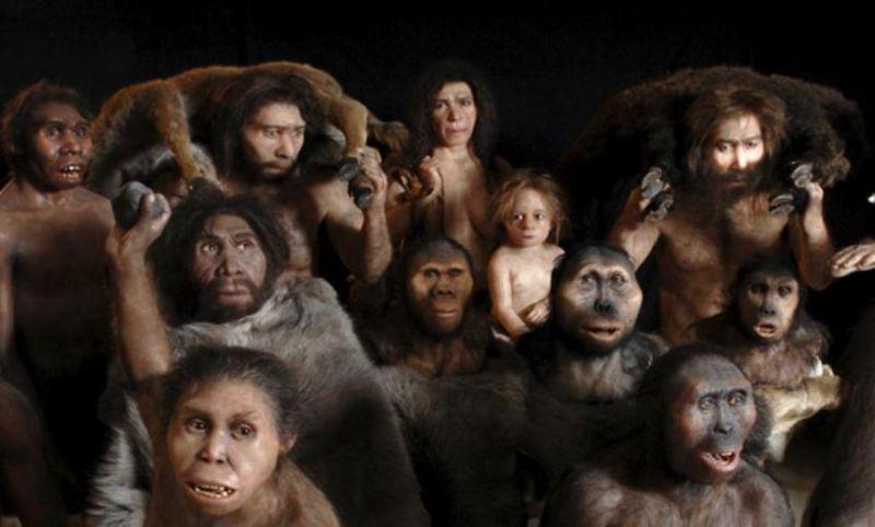 Photo of Šta je pokazalo novo istraživanje o Homo sapiensu?