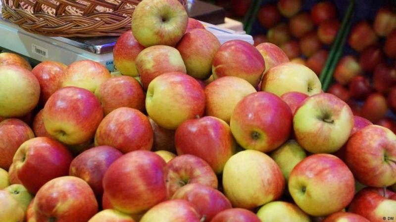 Photo of Sa privatnog voćnjaka u Potkozarju ukrali oko 300 kilograma jabuka