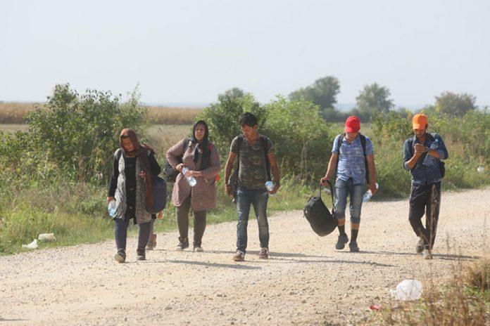 Photo of Na području Bijeljine i Bosanske Gradiške pronađen 91 migrant