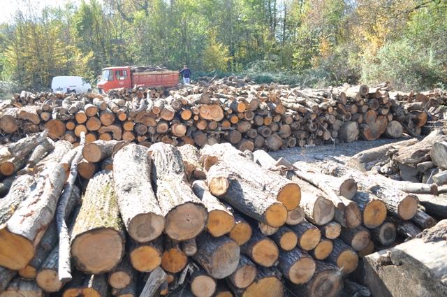 Photo of Drvo i ugalj za ogrev poskupjeli i u Brčko Distriktu