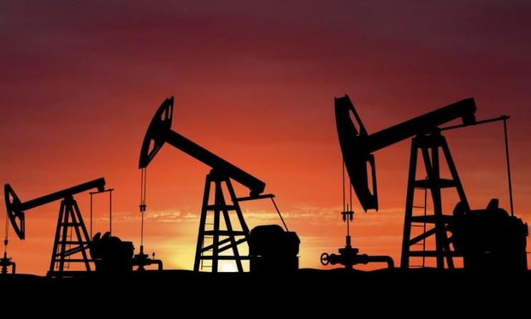 Photo of Cijene nafte na svjetskom nivou u novom padu