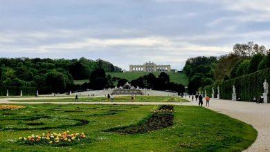 Photo of Oporavak turizma u Beču očekuje se iduće godine