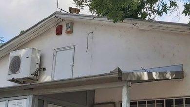 Photo of Mačka na usijanom limenom krovu..