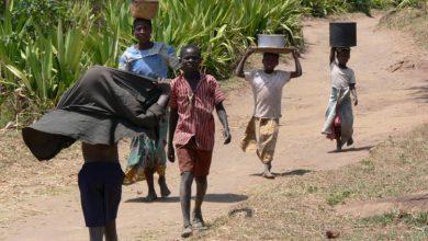 Photo of UN upozorava da bi još 130 miliona ljudi moglo ostati bez hrane zbog pandemije