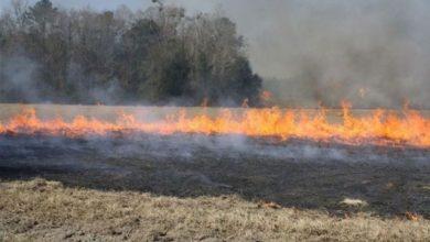 Photo of Poljoprivrednicima zabranjeno da spaljuju organske ostatke poslije žetve